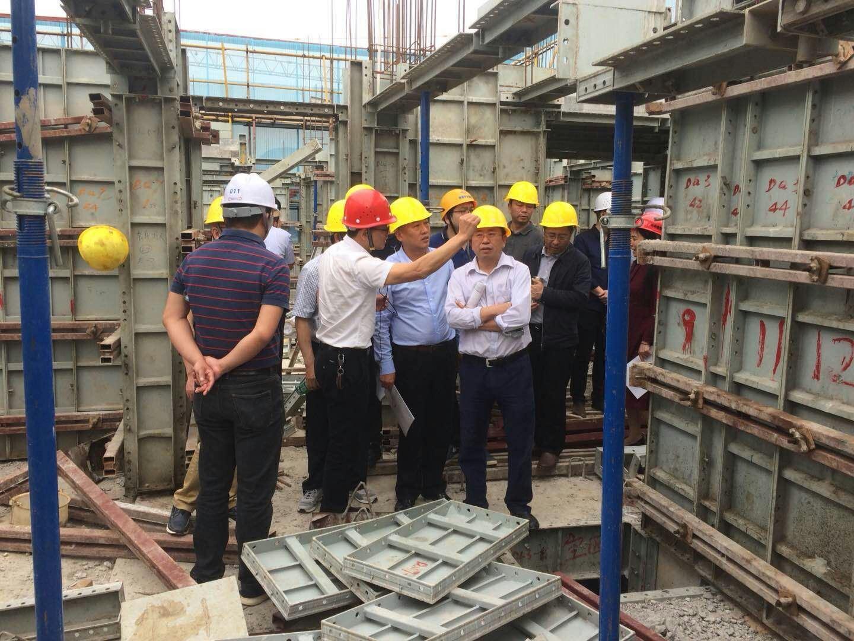 浏阳市住建局领导莅临元拓铝模碧桂园天荟项目考察
